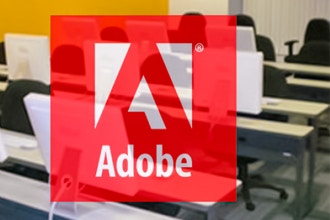 Adobe XD Training