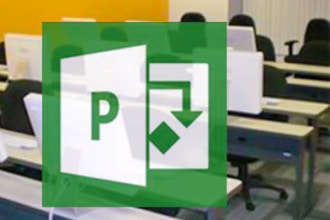 Microsoft Project Level 2