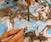 Suminagashi Painting