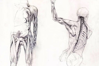 Constructing the Figure: Virtual Figure Drawing