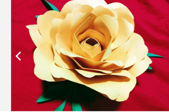 Paper Flower Creations