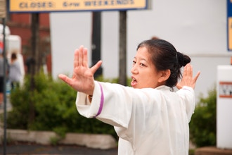 Simple and Healing Medical Qi Gong (4 Sessions)