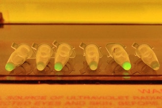 Programming with DNA in a Test Tube