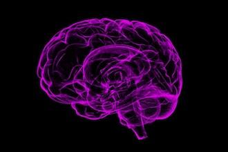 DIY Neuroscience: Mind Reading 101