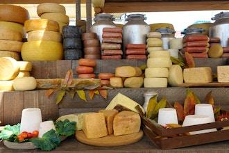 Fresh Italian Cheeses