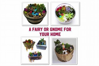 All Ages Plant Nite: Gnome & Fairy Pick-Your-Planter