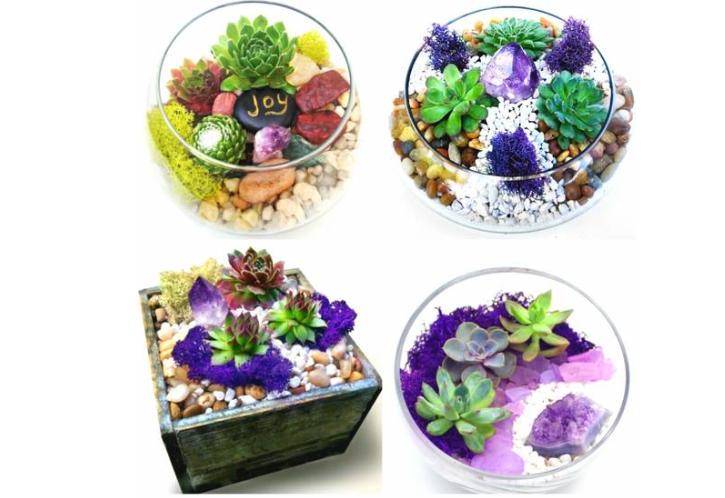 Plant Nite Garden Or Terrarium W Amethyst Crystal Terrarium Classes Los Angeles Coursehorse Yaymaker