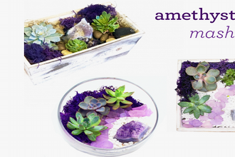 Plant Nite: Amethyst Planter Mash-Up