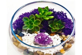 Plant Nite: Natural Stones with Amethyst in Rose Bowl