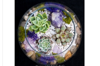 Plant Nite: Amethyst in Rose Bowl (Ages 13+)