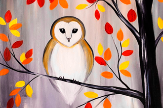 Autumn Barn Owl