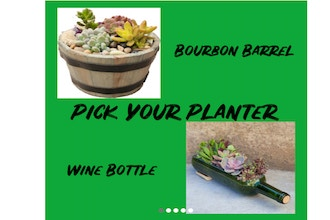 Plant Nite: Bourbon Barrel or Wine Bottle