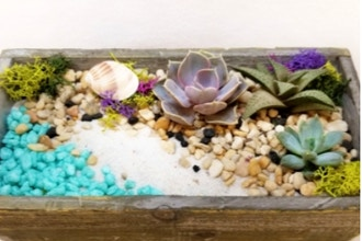 Plant Nite: Beach Scene Terrarium in Distressed Planter