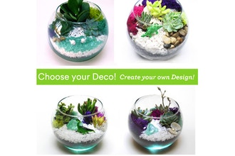 Plant Nite: Choose your Deco - Rose Bowl