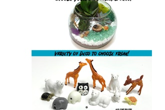Plant Nite: Choose your Deco Rose Bowl - Animals!