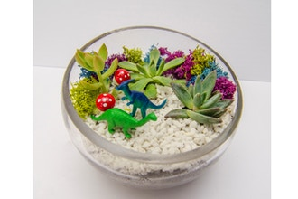 All Ages Plant Nite: Dino Days Succulent Slope Bowl