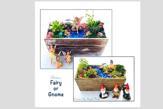 Plant Nite: Fairy or Gnome Garden in Distressed Wood