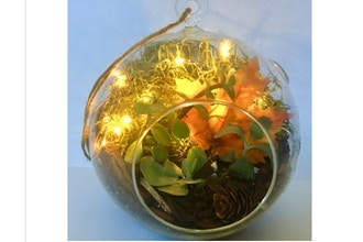 Plant Nite: Fall Fairy Light Succulent Terrarium