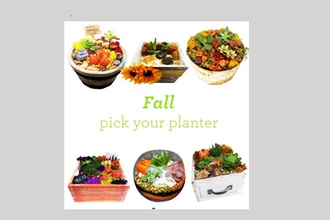 Plant Nite: Fall Pick Your Planter