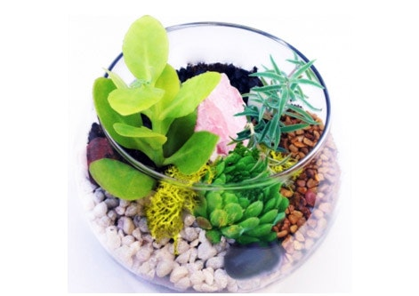 Glass Rose Bowl Terrarium Baby River Rock Rose Quartz Terrarium