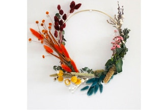 Plant Nite: Rainbow Dried Floral Hoop Wreath II