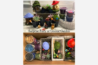 Virtual Plant Nite: Surprise Fairy or Gnome Garden
