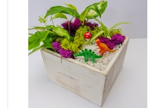 Plant Nite: Tropical Dino Forest in Wooden Cube