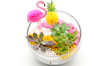 Plant Nite: Slope Bowl - Tropical Flamingo Party