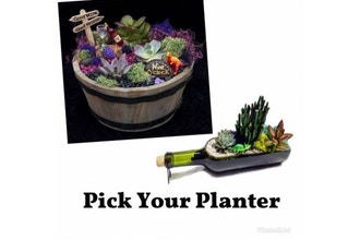 Plant Nite: Wine Bottle or Whiskey Barrel (Ages 6+)