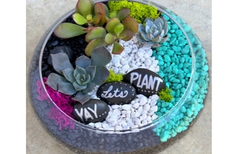 Plant Nite: YAY, Let's Plant in Lily Bowl