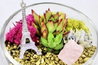 Plant Nite: Take me to Paris Terrarium