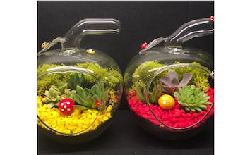 Plant Nite: Apple Glass Terrarium