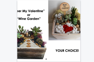 Plant Nite: Beer or Wine - Be My Valentine