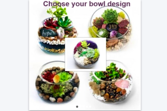Plant Nite: Bowl Designs