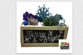 Plant Nite: Chalkboard Holiday or Everday Design