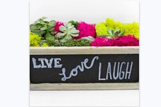 Plant Nite: Succulent Garden in Chalkboard Planter