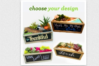 Plant Nite: Choose Your Chalkboard Planter Design