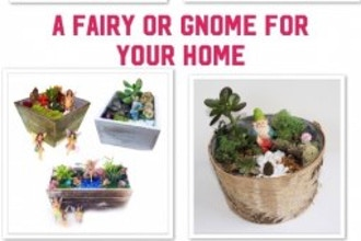 Plant Nite: Gnome & Fairy Pick-Your-Planter