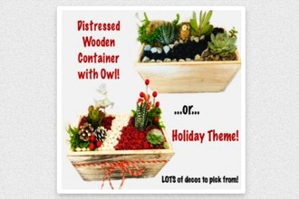 Plant Nite: Holiday Theme or Owl