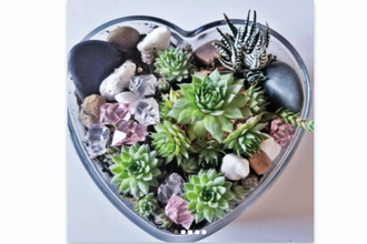 Plant Nite: My Love is Your Love Heart Terrarium