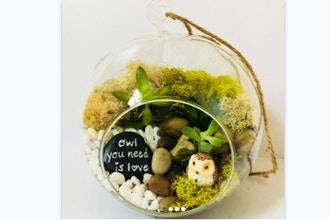 Plant Nite: Owl You Need is Love Succulent Terrarium