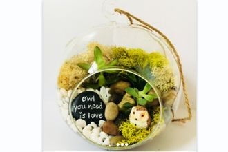 Plant Nite: Owl You Need is Love Succulent Terrarium