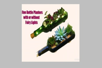 Plant Nite: Succulents in Wine Bottle Planter