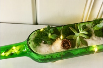 Plant Nite: Wine Bottle w/ Fairy Lights & Pinecones