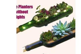 Plant Nite: Wine Bottle Planter with or w/o Fairy Light