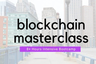 The Blockchain Masterclass