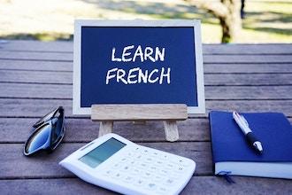 Adult Beginner French Level 2