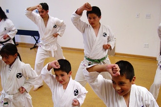 Intermediate Karate (All Ages)