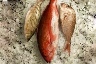 Fish 101: Butchery + Preparation