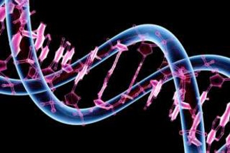 Introduction to Using DNA for Genealogy